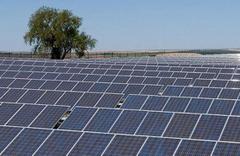 Dev güneş enerjisi santrali ihalesi kazanan belli oldu