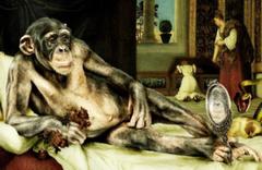 Para kullanmayı öğrenen maymunlar fuhuş yaptı inanılmaz!
