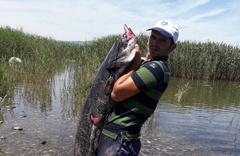 Boyu kadar balık yakaladı