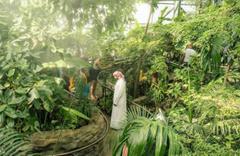 Dubai Dünyanın en yeşil kenti olacak