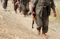 Hakkari'deki operasyonda 3 terörist öldürüldü