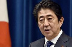 Japonya Başbakanı Abe'den Arakanlı müslümanlar için çağrı