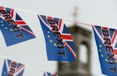 İngiltere'de bir Brexit istifası daha