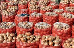 Soğan yılbaşına kadar 10 lirayı bulacak