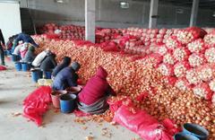 Soğan üreticisi sonunda isyan etti 'Stokçu değiliz'