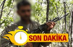 Diyarbakır'a eyleme gelmişti sağ olarak yakalandı