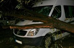 İstanbul'u fırtına ve yağış vurdu! Ağaç minibüsün üzerine devrildi