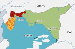 Trump'ı apar topar çekilmeye iten 5 önemli neden var 2'si Türkiye