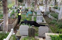 Annesinin mezarı başında intihar etti