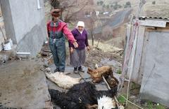 Bütün köy panikte: 'Bu bir afet, bize yardımcı olsunlar'