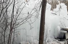 Patlayan borudan fışkıran su buz tuttu