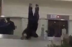 Suudi Prens Londra Havalimanı'nda böyle intihar etti