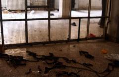 Afrin'deki PKK cezaevinde kan donduran işkence!