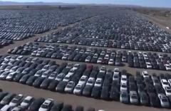 Yüz binlerce aracı kaderine terketti! İşte Volkswagen'in araç mezarlığı