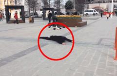 Taksim Meydanı'nda ibretlik görüntü! Görenler şoke oldu