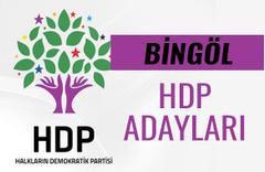HDP Bingöl milletvekili adayları 27. dönem listesi