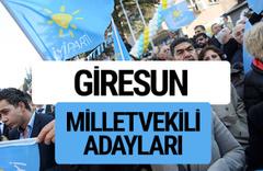 Giresun İyi Parti milletvekili adayları YSK kesin isim listesi
