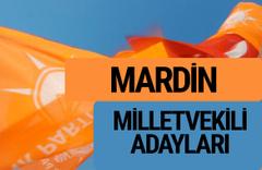 AKP Mardin milletvekili adayları 2018 YSK AK Parti kesin listesi