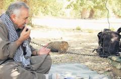 PKK'nın çaresizliği telsiz konuşmalarına yansıdı! Kandil düşer...