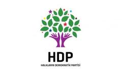 HDP grup başkanvekilleri belli oldu