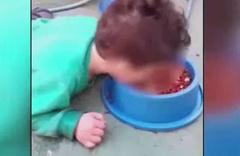 Skandal görüntü! Vicdansız anne oğluna köpek maması yedirdi