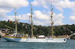 Boğazdan geçen gemi ilgi odağı oldu: Dünyada sadece 5 tane var!
