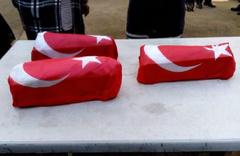 Erken doğan 1 günlük üçüzlere Türk bayraklı veda