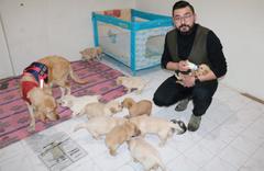 Sivaslı esnaf doğum yapan köpeğine apartmanda daire kiraladı
