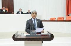 CHP'li vekil Ergene kirliliğini meclise taşıdı