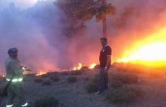 Kaz Dağları'ndaki yangına karadan müdahale