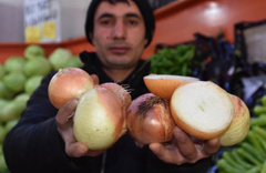 İthal soğanlar İran'dan geldi