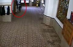Sivas'ta camideki hırsızlık anı güvenlik kamerasında