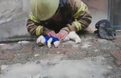 İtfaiye eri köpeği hayata döndürmek için böyle mücadele verdi