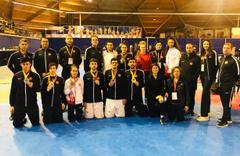 Hollanda'da Milli tekvando takımından 3'ü altın 7 madalya