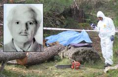 Antalya'da korkunç ölüm! Kestiği ağacın altında can verdi