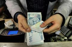 Bekir Pakdemirli'den besiciye ödeme açıklaması