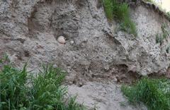 Göçük oluşan yerden insan kemikleri çıktı