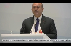 Cezayirlilerden Dışişleri Bakanı Mevlüt Çavuşoğlu'na destek
