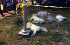 Köpek katliamında 3 kişinin serbest kalmasına yönelik itiraz reddedildi