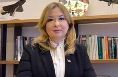 Erdoğan'ın Başdanışmanı Gülnur Aybet'ten kritik F-35 açıklaması
