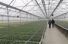Meram'a sebze fidesi üretim tesisi kuruluyor