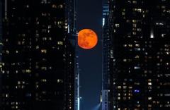 New York'ta Dolunay görsel şölen oluşturdu