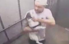 Asansörde köpeğe işkence saniye saniye kamerada