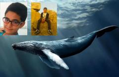 Kuzenlerin intiharında 'mavi balina' şüphesi!