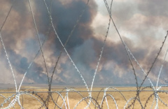 Suriye'de çıkan yangın Türkiye sınırına dayandı!