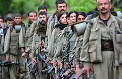 Kars'ta PKK/KCK'ya dikkat çeken operasyon! Çok sayıda gözaltı var
