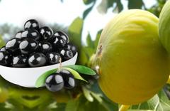 Her gün incir ve zeytin tüketmenin inanılmaz faydaları! Bilim insanları açıkladı