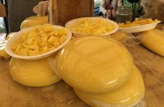 Kars'taki 'Anadolu Peynirleri Buluşması'nda 32 ilden gelen peynirler beğeniye sunuldu