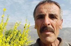 Ovacık'ta boğanın saldırdığı sahibi öldü
