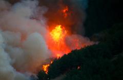 Seferihisar- Karabağlar - Menderes'e sıçradı! İzmir orman yangınında son durum